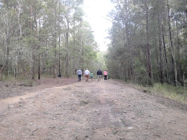 Dularcha National Park. Tunnel Ridge Outlook sits right on the edge of the Dularcha National Park. A historic railway tunnel built in 1891, a bat colony (seasonally roosting), eucalypt forests and riparian areas with flooded gums, cabbage tree palms and rainforest plants feature here. Shared trails are provided for walkers, mountain bike riders and horse riders.